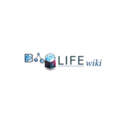 wikiBAOLIFE